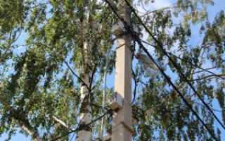 Электрический столб на участке нормы