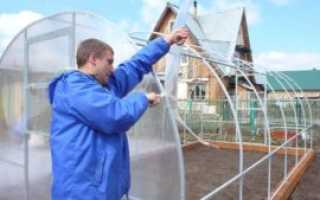 Как правильно покрыть деревянную теплицу поликарбонатом